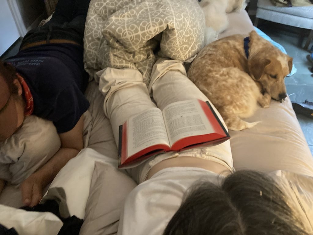 ross, me, frankie, teddy, reading in bed